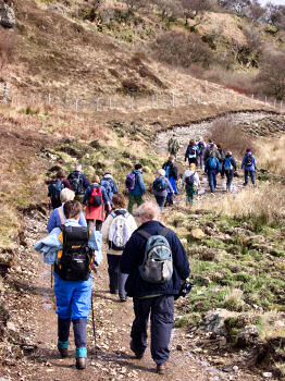Picture of a group of walkers along a winding path