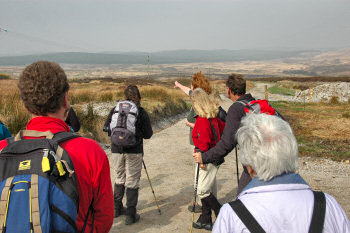 Picture of a walk leader pointing into the distance, walkers looking into the direction