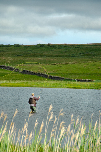 Picture of an angler standing in a loch (lake), fishing