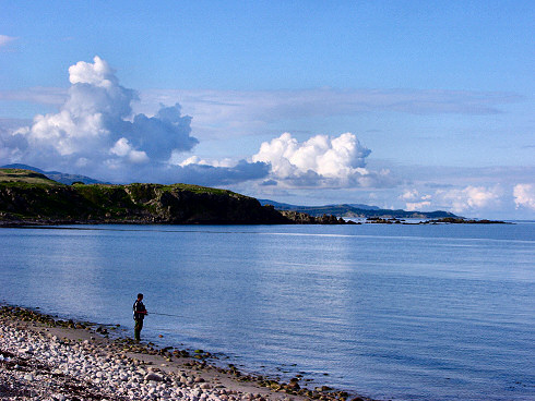 Picture of an angler standing on the beach of a calm bay under a summer evening sky