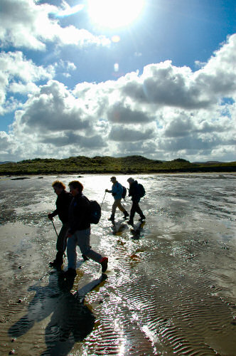 Picture of a group of walkers on a beach against the bright sunlight