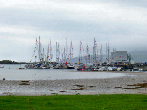 Picture of yachts with many colourful flags at a small marina