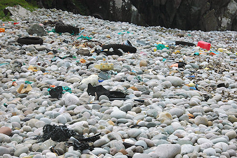Picture of a pebble beach full of rubbish