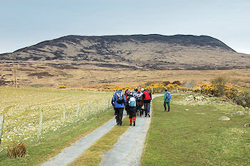 Picture of a group of walkers walking towards a larger hill