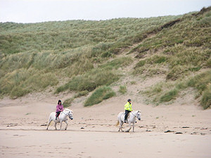 Picture of two riders below dunes on a beach