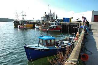 Picture of the fish quay in a small harbour on a sunny day