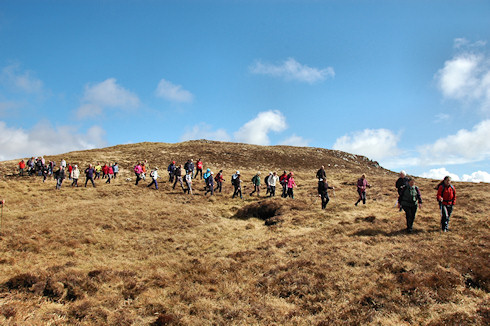 Picture of a large group of walkers stretched out across a hillside
