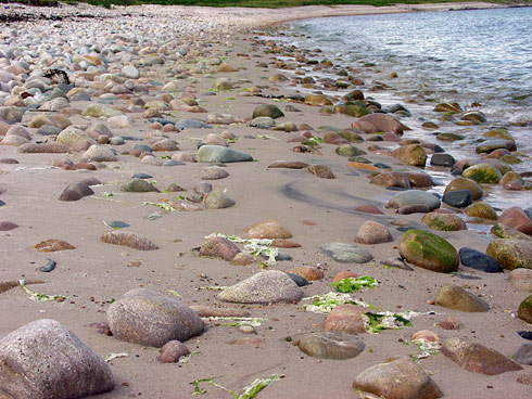Picture of stones on a rocky beach, the beach bending away in the distance