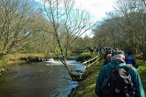 Picture of walkers along a small river flowing through woodlands