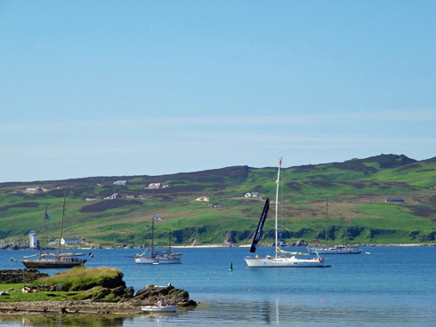 Picture of a bay with some tall ships and yachts