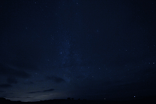 Picture of a night sky over a field with cattle