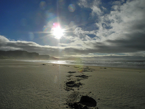 Picture of a sunny morning in a bay with a sandy beach