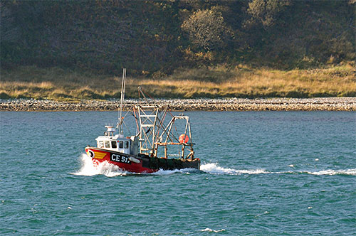 Picture of a small fishing boat cruising along a sound