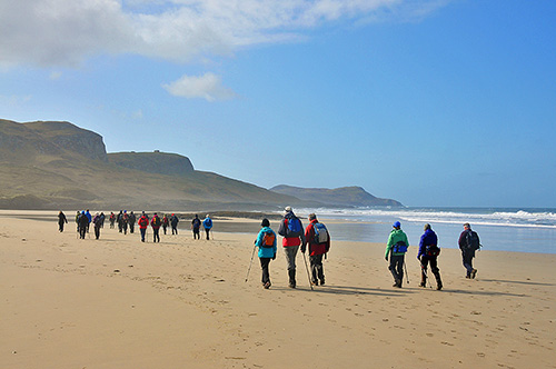Picture of a large group of walkers on a beach